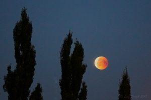 Den blodiga månen...