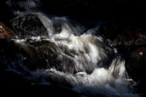 Rädån mellan dammarna