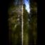 Storskogars skönhet