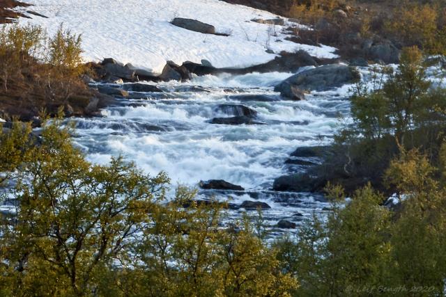 Vårflod i Saxån
