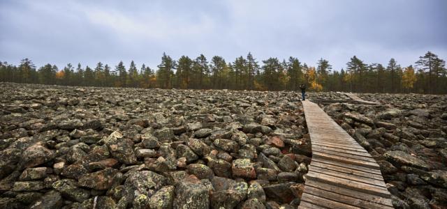 Kivijata stenfält tvärs över.