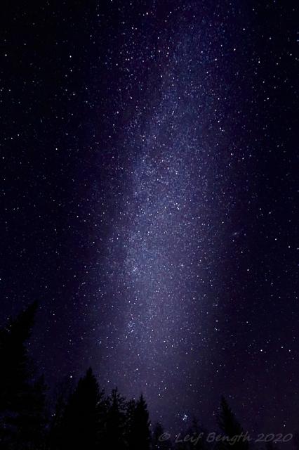Vintergatan över skogen