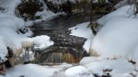 Vintervatten norr på skogarna