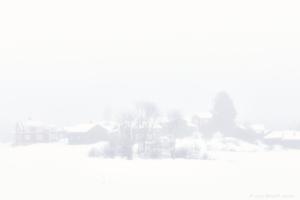 Dimmig vinterdag