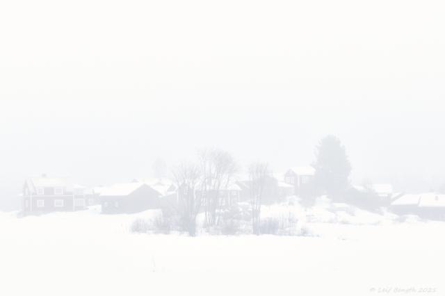 Moren i dimma