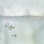 Det våras i isfallen