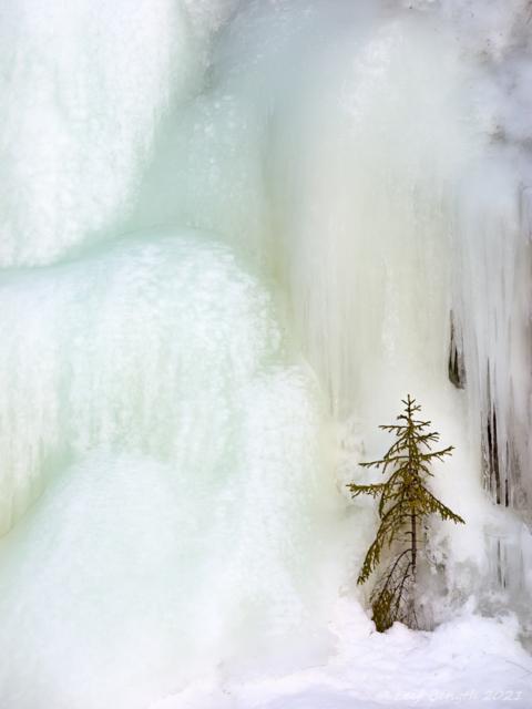 Tittar fram ur isen