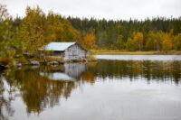 Höst vid Östersjön