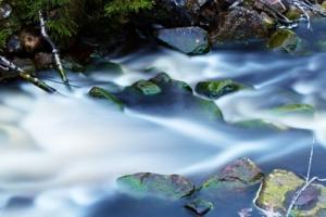 Vattenlek i Geddtjennbäcken