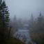 Mitt paradis i dimma