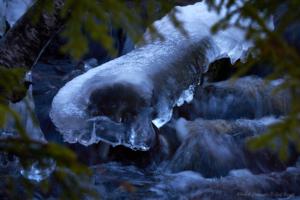 Isiga väsen i höstbäckar...