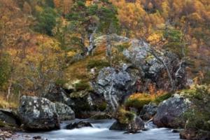 Innerdalen i Trollheimen, Norge (III)