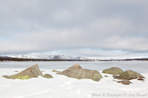 Vid Dalälvens källor II